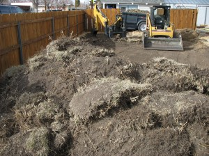 Buffalo Grass Lawn removal