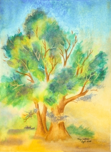 Benton Cottonwood, watercolor by Kay Wilson