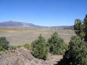Looking north towards Bridgeport, on the Big Hot Springs conservation easement. (Photo taken in 2006 for monitoring)