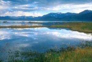 A view of Mono Lake, photograph by Stephen Ingram