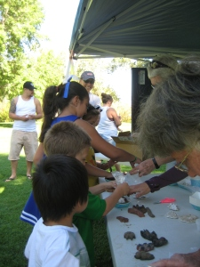 Children choose which wildlife track they are going to make a plaster mold of with Eastern Sierra Watershed Project.
