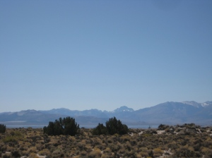 View of Mono Lake from the Yednock conservation easement.