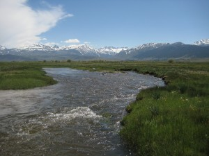 Conservation projects in the works: Bridgeport Valley.