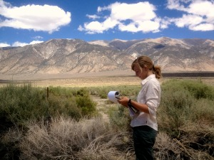 Our current SNAP member, Elise Robinette, monitoring one of ESLT's conservation projects in the Eastern Sierra. This is an important duty carried out by our AmeriCorps partners every year.