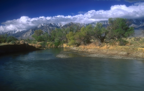Help us keep the Owens Valley waterways clean - volunteer with ESLT for the Great Sierra River Cleanup!