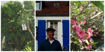 Ali's dad next to his prized fruit trees.