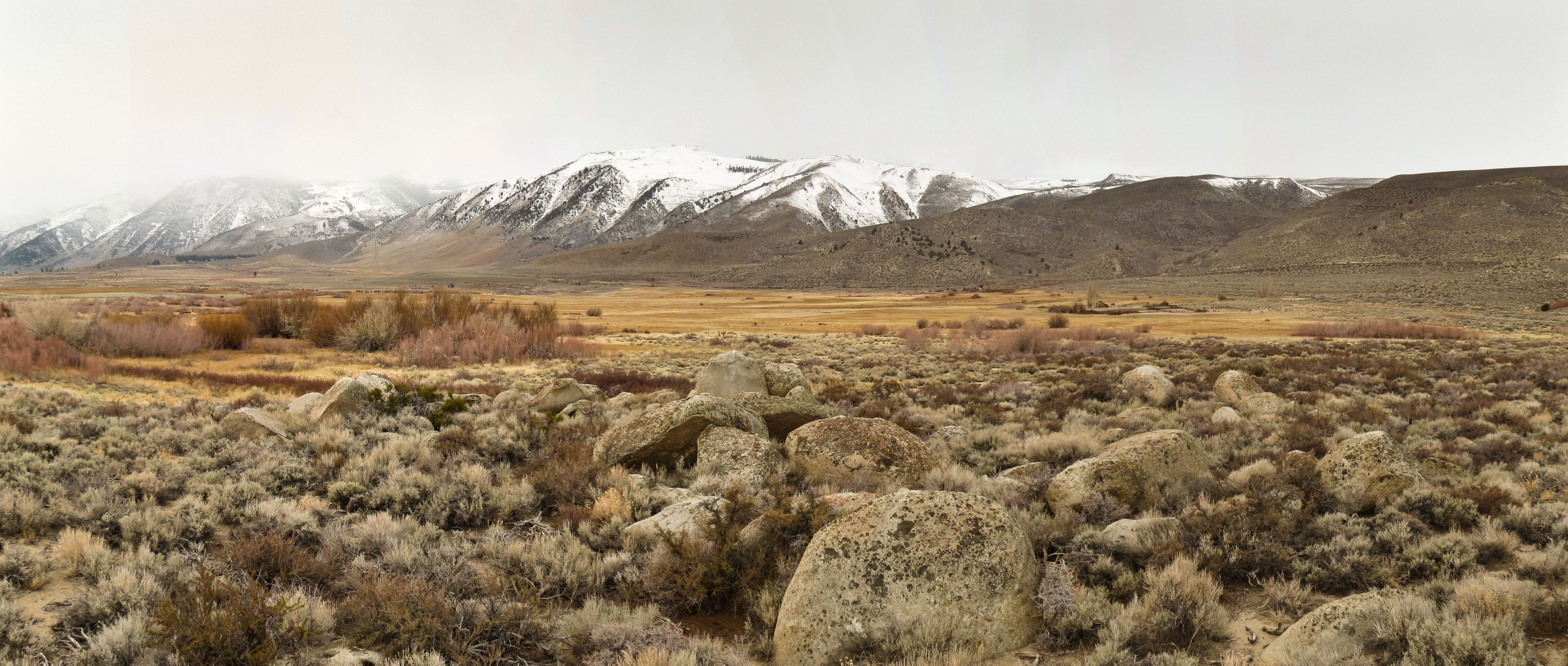 Conway Ranch: Protected Forever!   Eastern Sierra LandLines