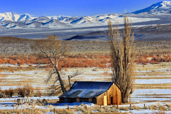 Thanks to two years of cooperative efforts between Mono County, Eastern Sierra Land Trust, and funding partners, the historic Conway Ranch property is now protected forever. Photo © Kathleen Bishop.