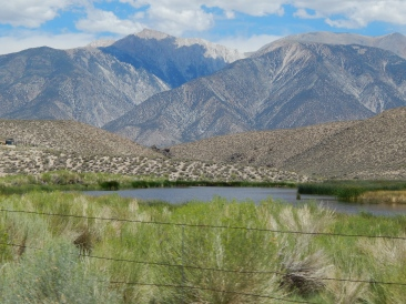 What a gorgeous day to put in some good work at the Benton Hot Springs Ranch Conservatoin Easement! Photo © Abbey Blair