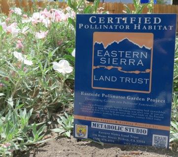 Pollinator Plaque