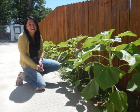 Catherine in Sunflower Garden