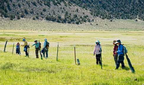 Achieving renewed national accreditation signals Eastern Sierra Land Trust's commitment to lasting conservation – and to ESLT, an important part of that is engaging our community in our ongoing land protection and habitat restoration work. Photo © Bill Dunlap.