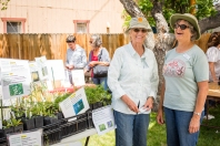 Rosemary Jarrett and Katie Quinlan of the California Native Plant Society smile in front of their table of beautiful native plants for sale.