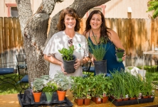 By the end of GardenFest, Gina Barsi of Chalfant Big Trees Farm & Feed (left) was completely sold out of the seedlings she brought with her for the day's festivities.