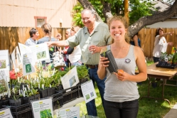Eastern Sierra Land Trust's Education Coordinator and AmeriCorps Member, Indigo Johnson, was delighted to help locals find interesting native plants for their landscaping. ESLT Board Member Randy Keller took several seedlings home.